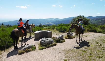 Pension pour chevaux à Ambierle